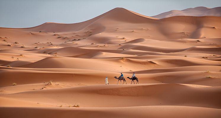 Passeggiata tra le dune