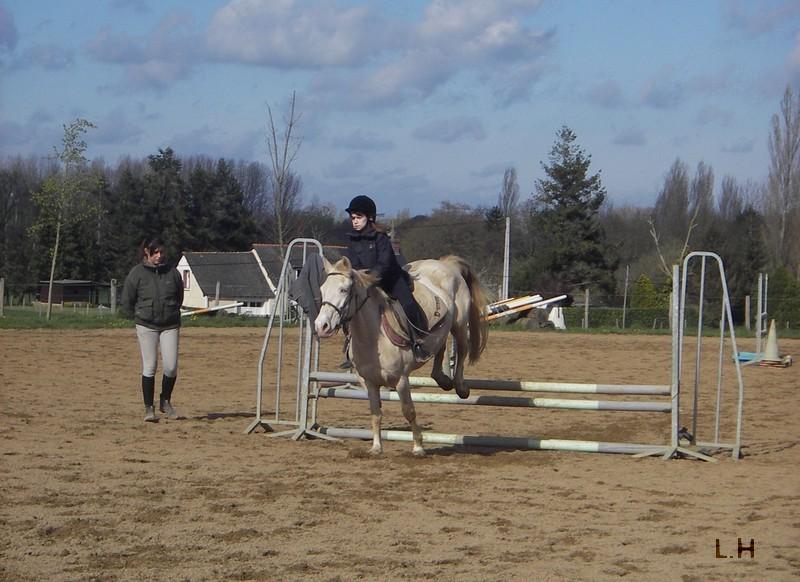 Passion, équitation, compétition...