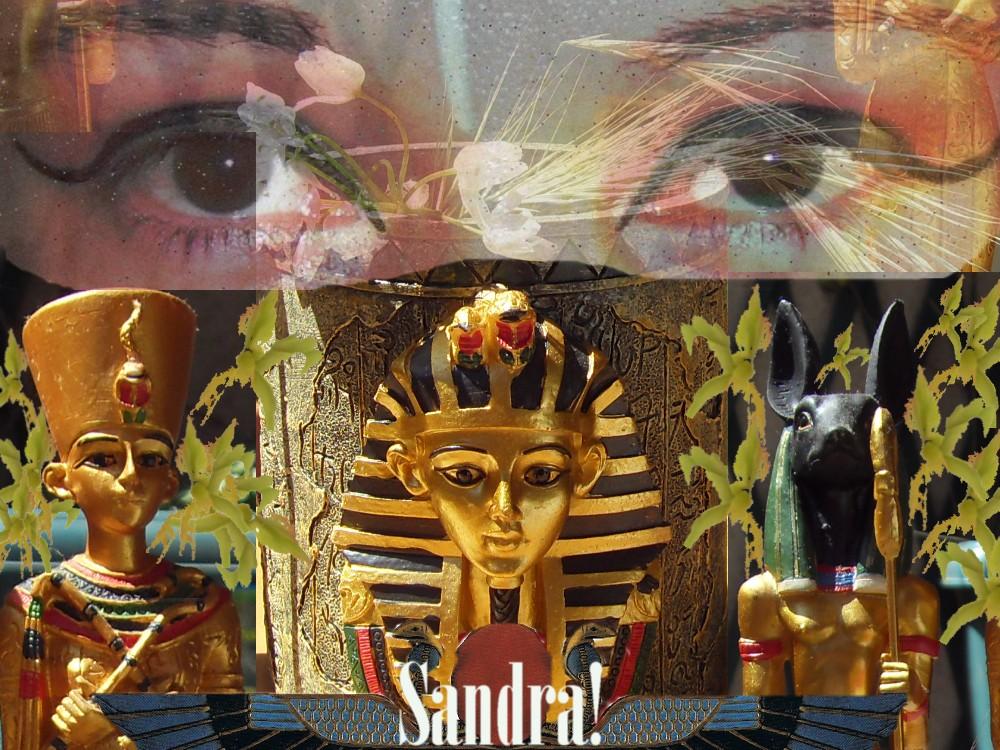 Passionnément EGYPTE...