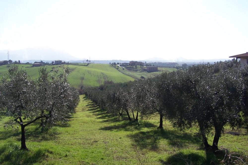 Passo Corese /Rieti)