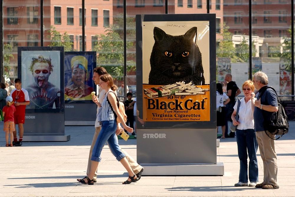 Passt auf Eure Katzen auf....