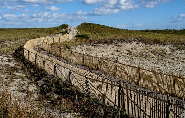 Pathway to Nauset Beach
