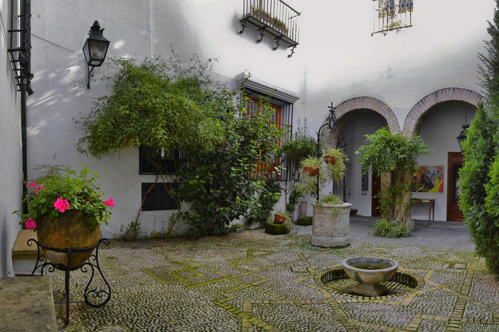 """Patio de la """"Casa de Los Guzmanes"""" en Cordoba-Andalucia- España"""