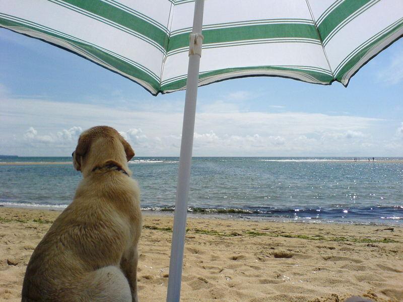 Paula im Urlaub