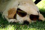 paula mit der brille