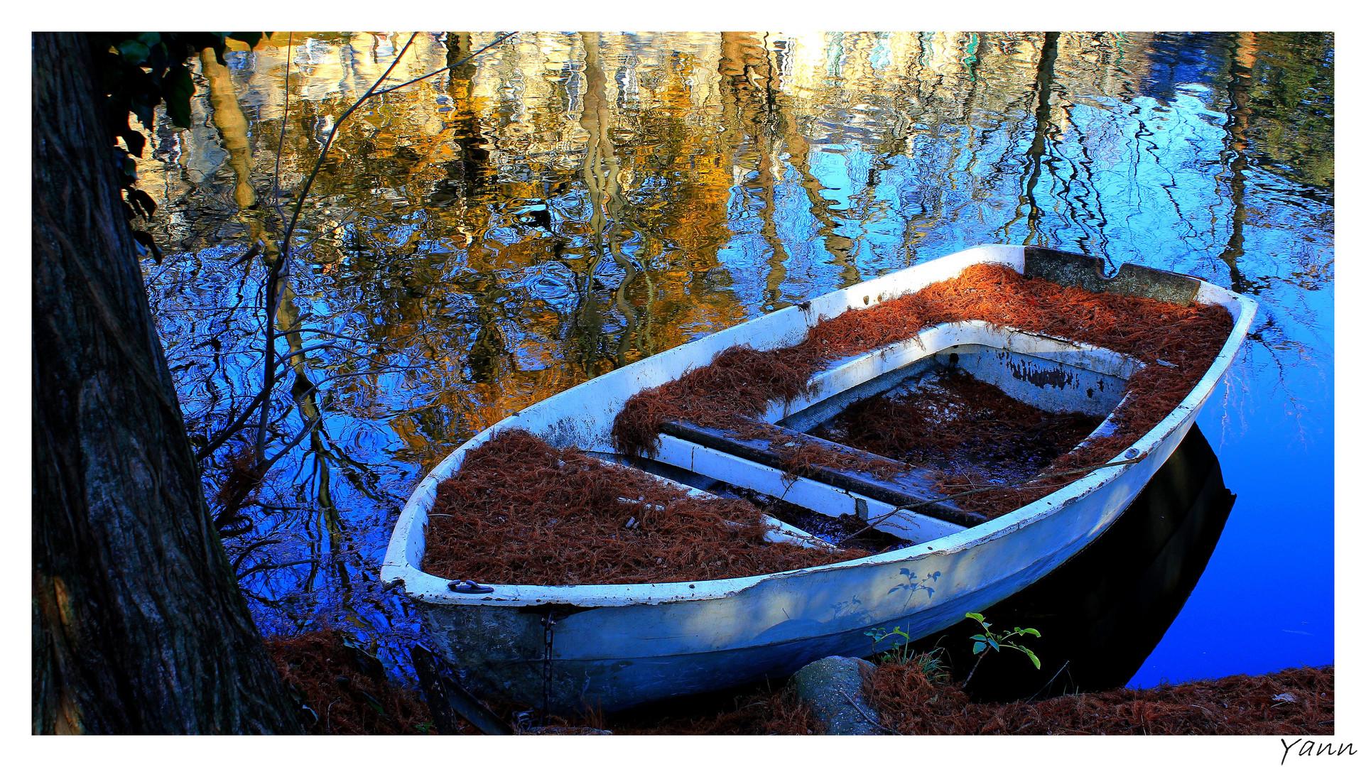 Pauvre barque...