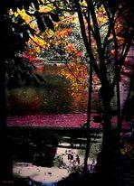 Pavana para un sueño de otoño