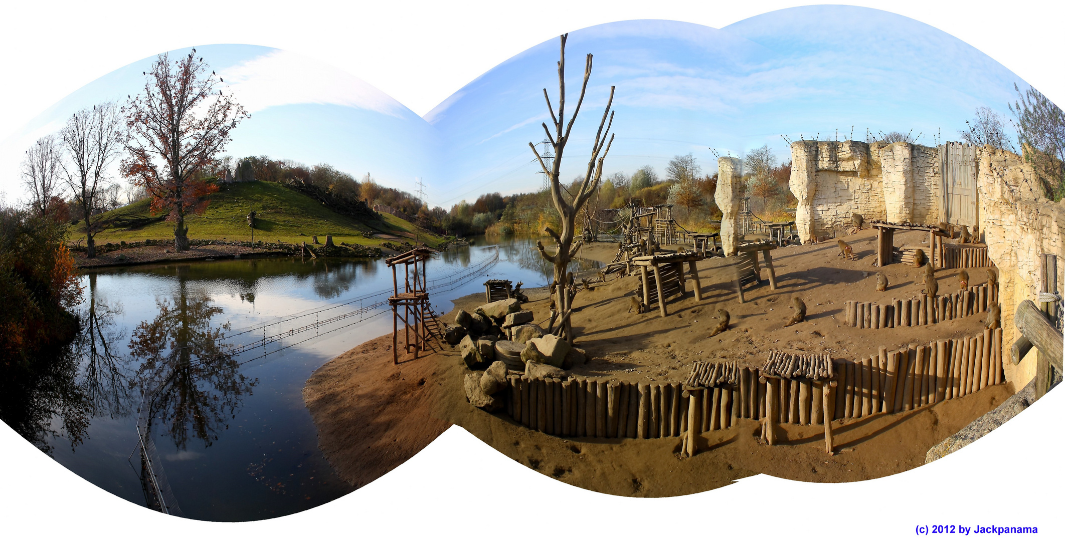 Pavian-City im Zoom-Zoo in Gelsenkirchen