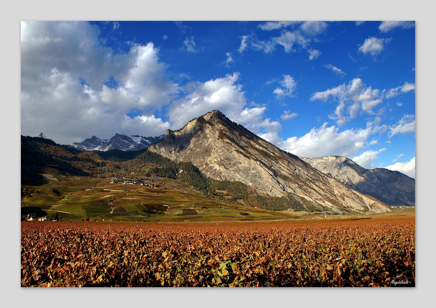 Pays du vin et de la montagne