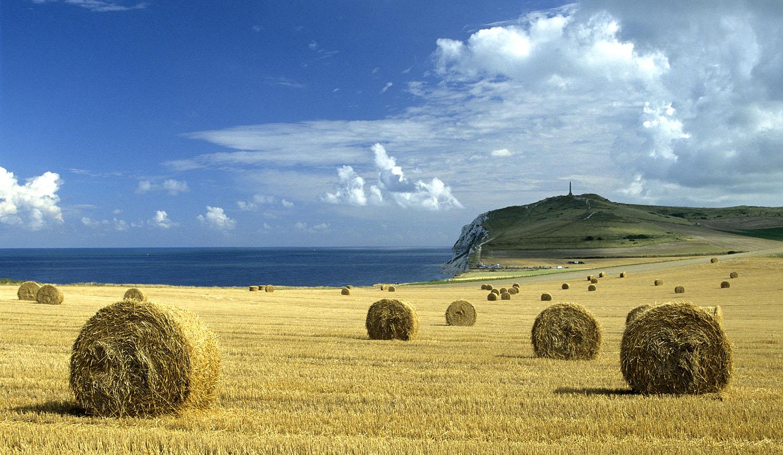 Paysage agricole au cap blanc nez photo et image for Agence cap paysages