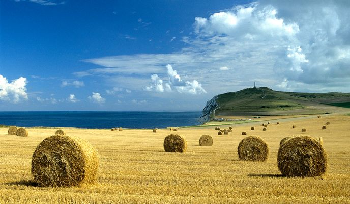 Paysage agricole au cap Blanc-Nez