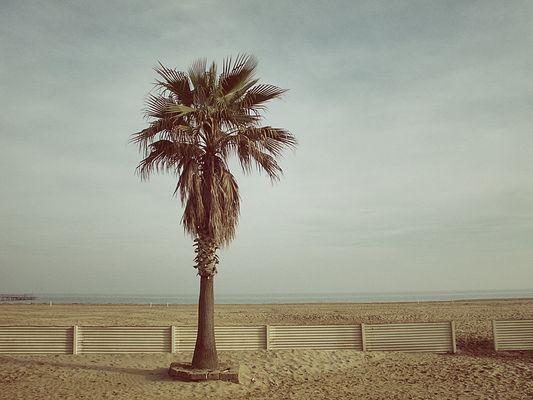 paysage (b)