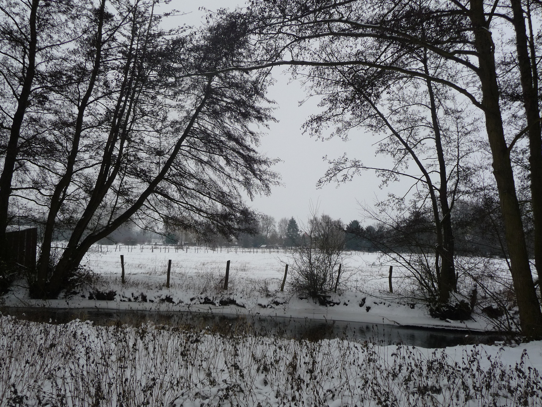 Paysage champêtre enneigé