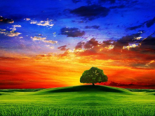 paysage color