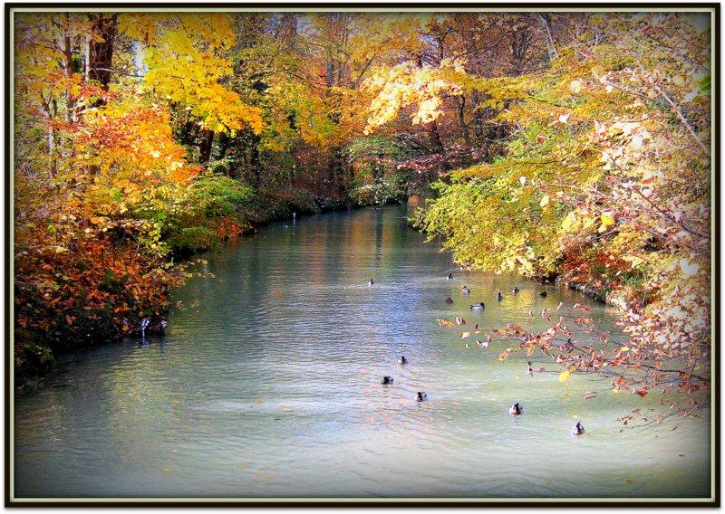 paysage d 39 automne photo et image paysages lacs rivi res cascades nature images. Black Bedroom Furniture Sets. Home Design Ideas