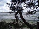 Paysage de Bretagne en avril
