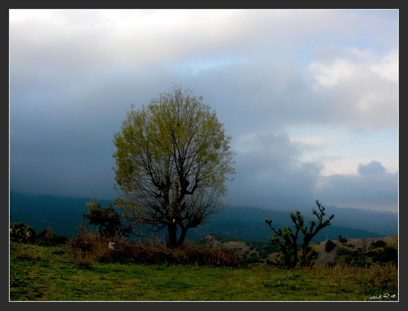 paysage de kabylie
