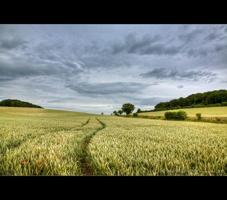 Paysage de Picardie : le Quesnel Aubry- 1
