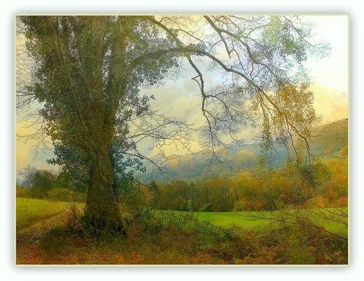 Paysage de Savoie (2)