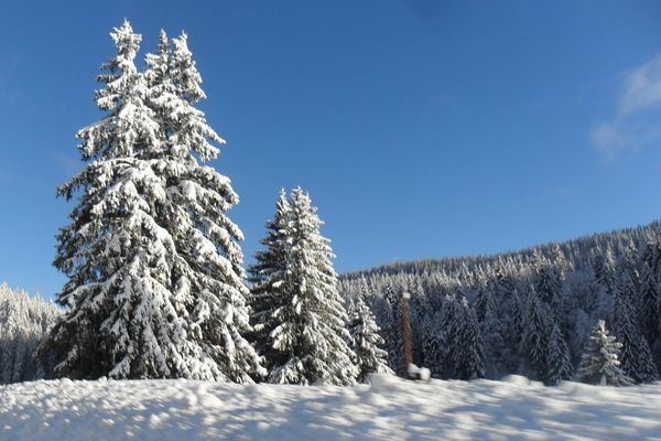 Paysage du Haut Jura