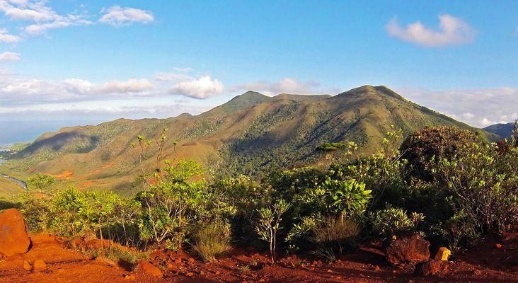 Paysage du Sud calédonien  --  Landschaft im Süden von Neukaledonien