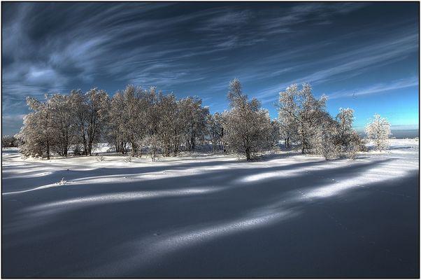 Paysage hivernal 10