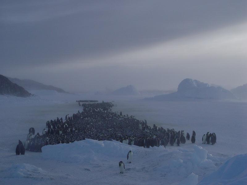 paysages du pôle
