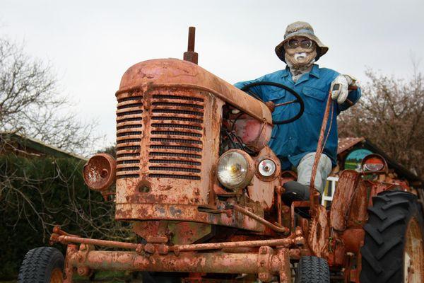 Paysan sur tracteur.
