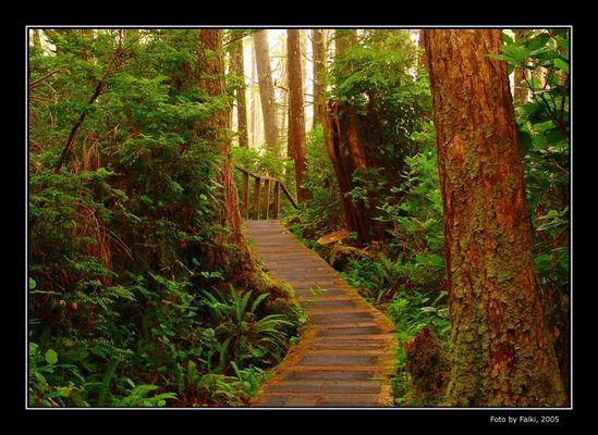 Pazific Rim National Park