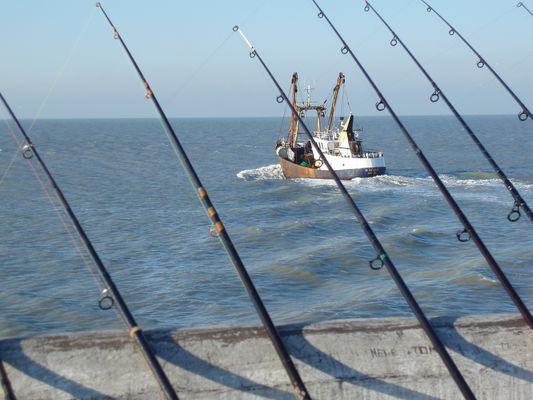Pêche à Ostende
