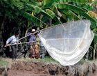 pêche au bord du Tonlé Sap