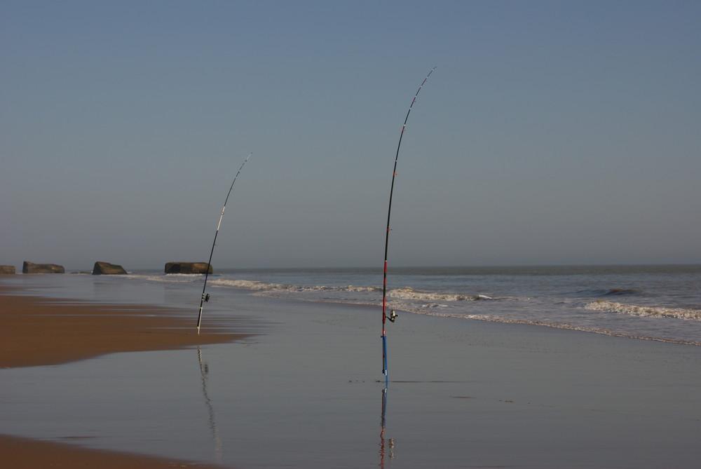 Pêche au milieu des vestiges !!!