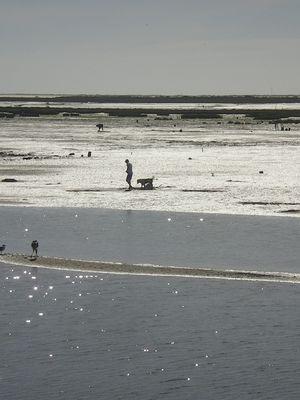 pêche aux crustacés
