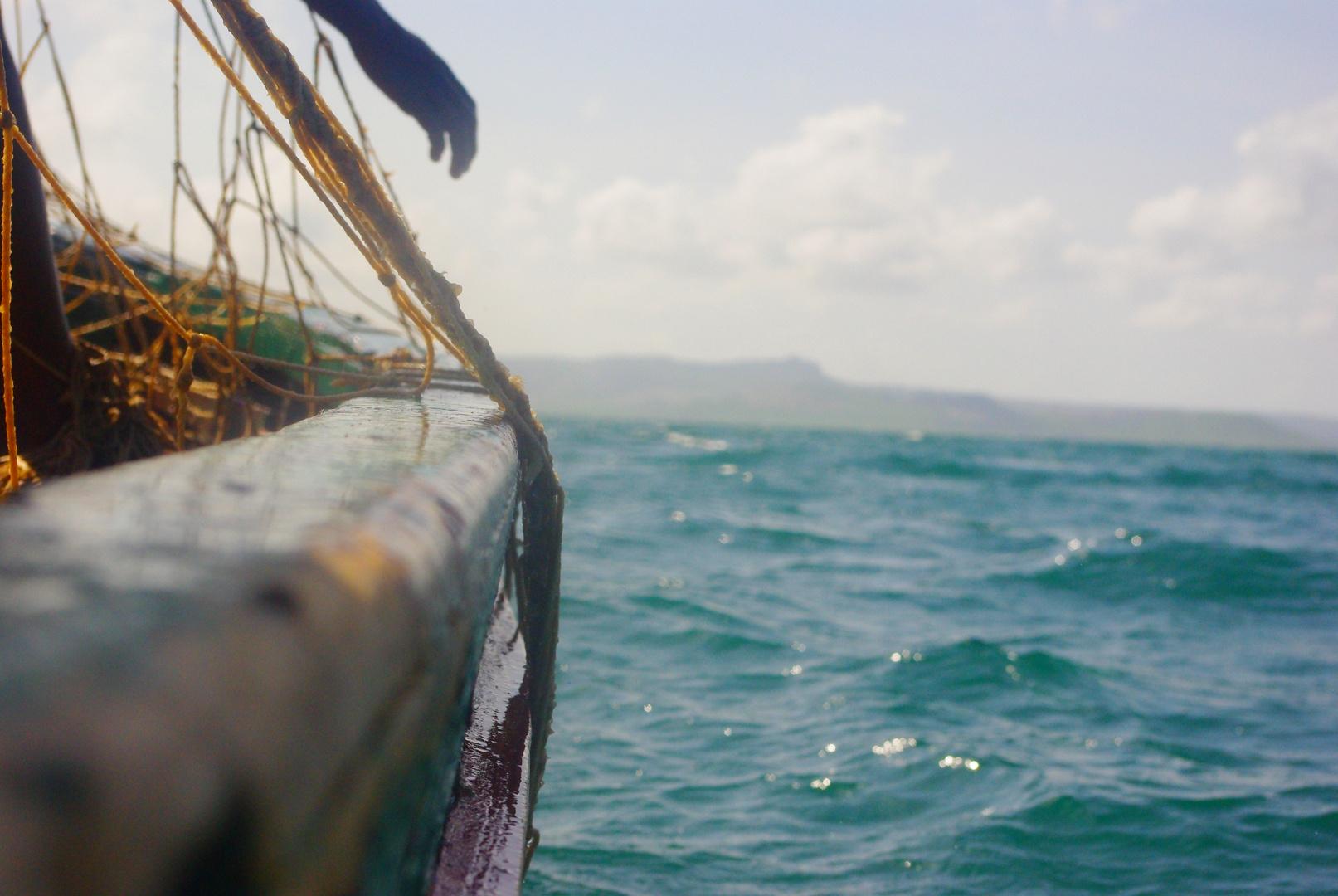 pêche dans la baie de diego