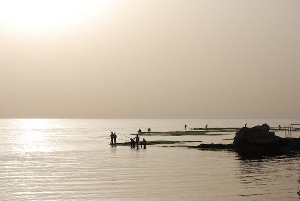 Pêcheurs dans le port de Byblos (Liban)