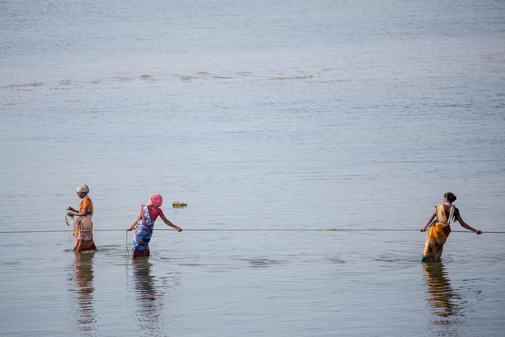 Pêcheuses au petit matin, Rameshwaram
