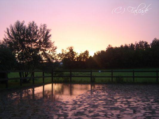 Peau de brume rosé d'un ciel artistique