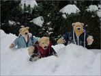 Pech im Schnee......