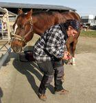 Pediküre für mein Pferd