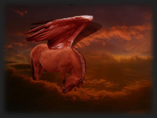 Pegasus im Abendrot