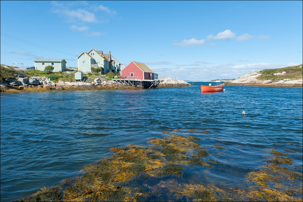 [ Peggy's Cove ]