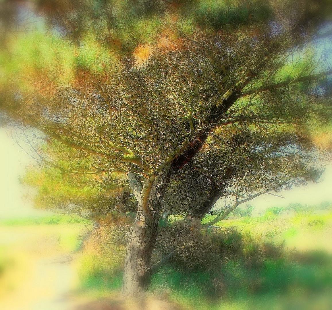 Peindre un arbre