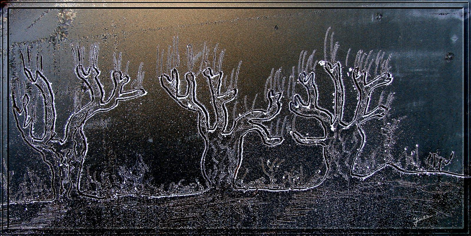 Peinture sur le givre du pare-brise.