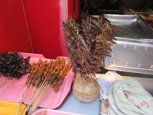 Peking Nachtmarkt (was man alles so essen kann)