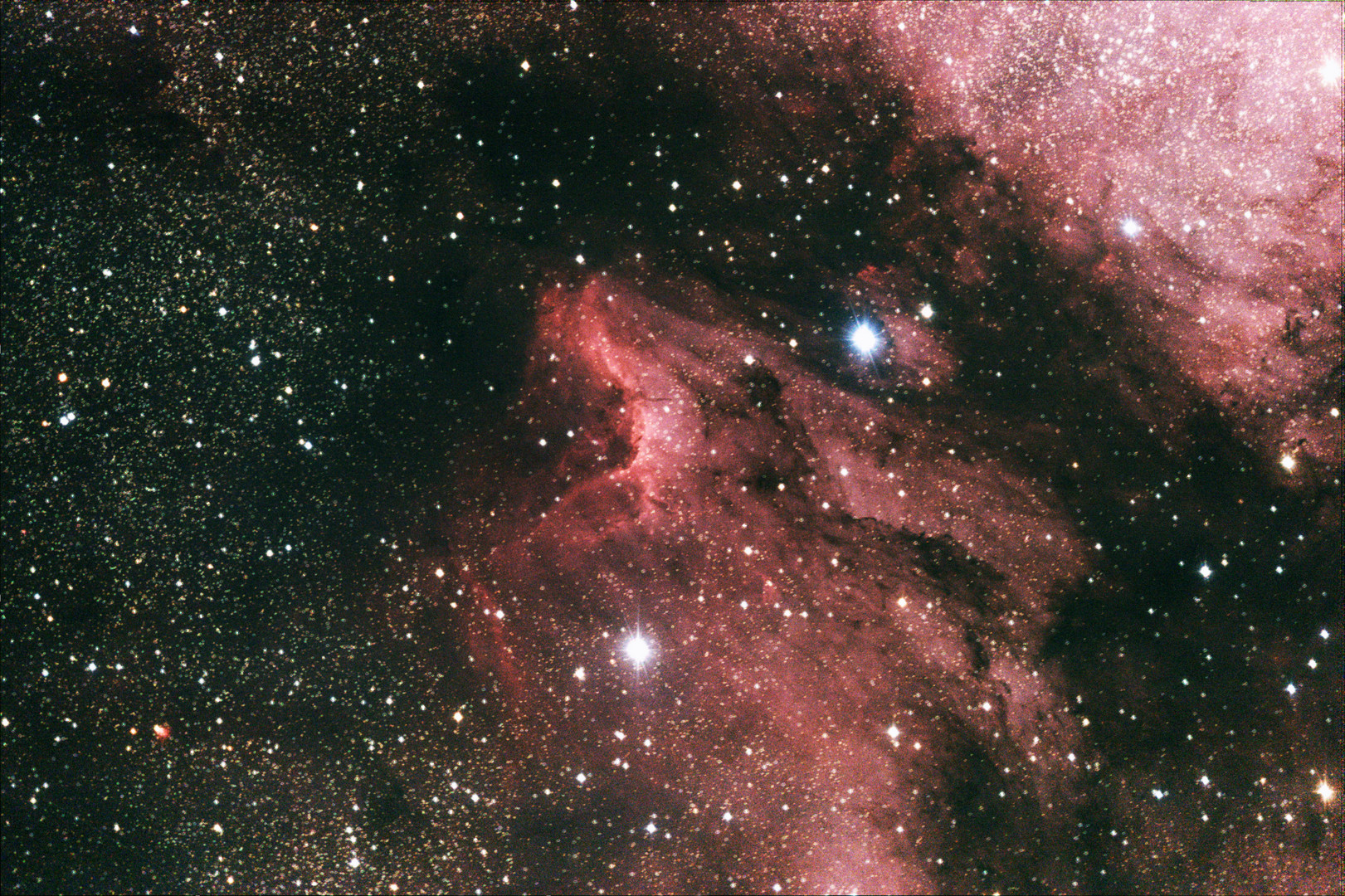 Pelikan-Nebel im Sternbild des Schwans