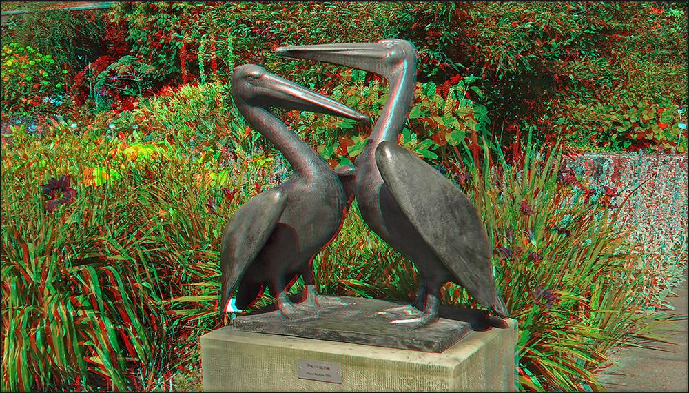 Pelikane (3D)