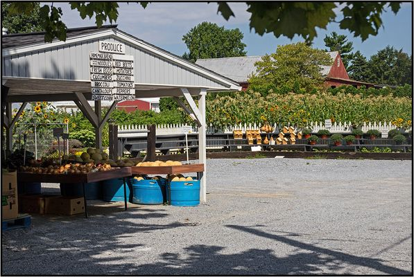Pennsylvania | Amish farm stand |