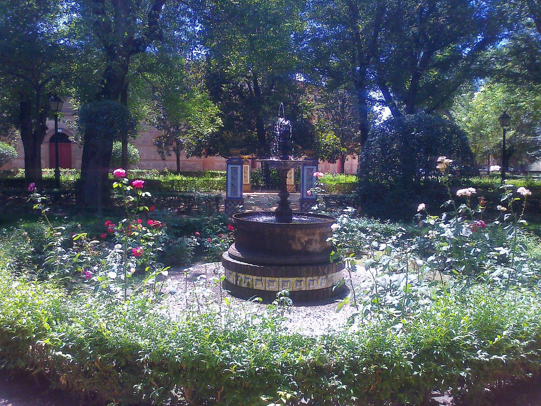 Pequeña Fuente entre flores....