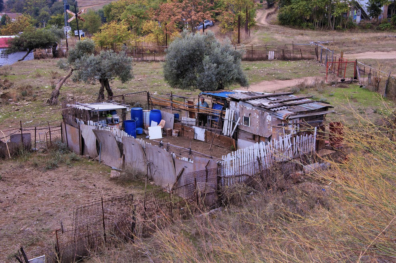 PEQUEÑA OBRA DE ARTE (al reciclaje) Y SU ARTISTA.