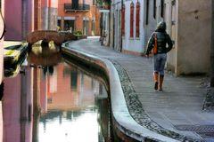 """Per le """"strade"""" di Comacchio"""